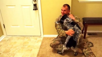 Watch Returning Soldiers Greeted By Their Pups In Heartwarming Must-See Compilation