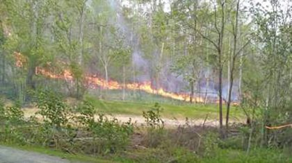 East Tennessee's Sevier County Hit With Brush Fire, Thousands Affected