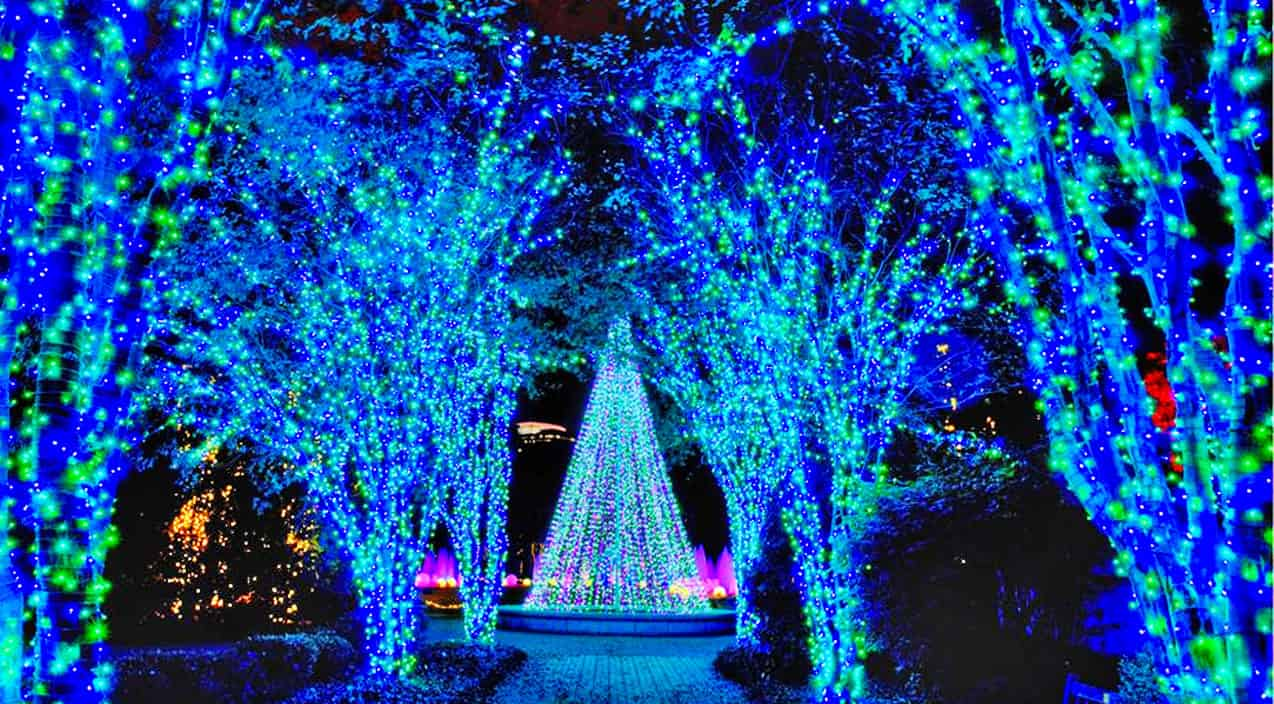 Top 10 Christmas Light Displays In The Most Popular Southern Cities – Page 11 – Country Music Nation